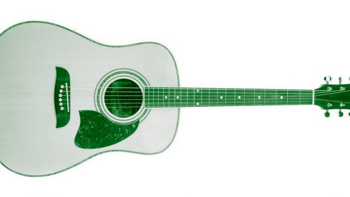 Gitara akustyczna Oscar Schmidt by Washburn – OG2N